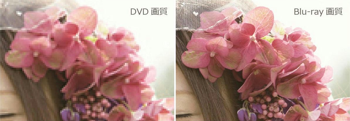 DVDとBlu-rayディスクの画質比較|結婚式ムービーchouchou(シュシュ)
